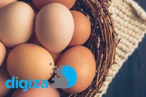 تحقیقات جدید: مصرف روزانه تخممرغ خطر ابتلا به دیابت را ۶۰ درصد افزایش میدهد