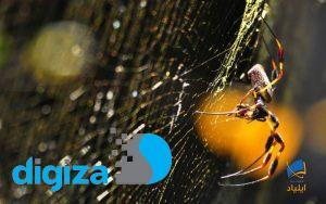 عنکبوتهایی که تار آنها زهر فلج کننده دارد