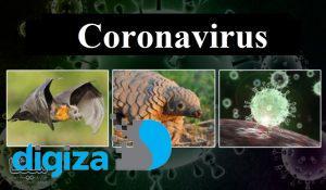 پژوهشگران روسیه: ویروس کرونا توسط انسان ساخته نشده است
