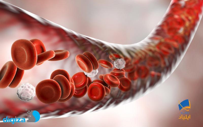 ساختار فشارسنج طبیعی بدن چگونه است و کجا قرار دارد؟