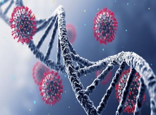 آیا نوع جهش یافته بعدی ویروس کرونا خطرناک است؟